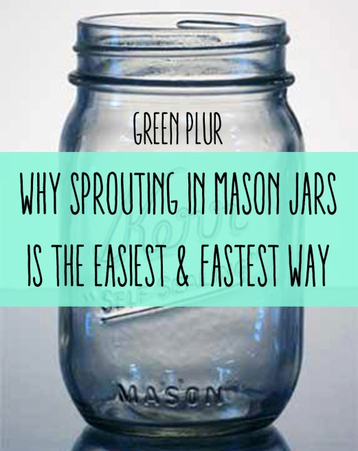 041-16oz_Glass_Mason_Jar[1]