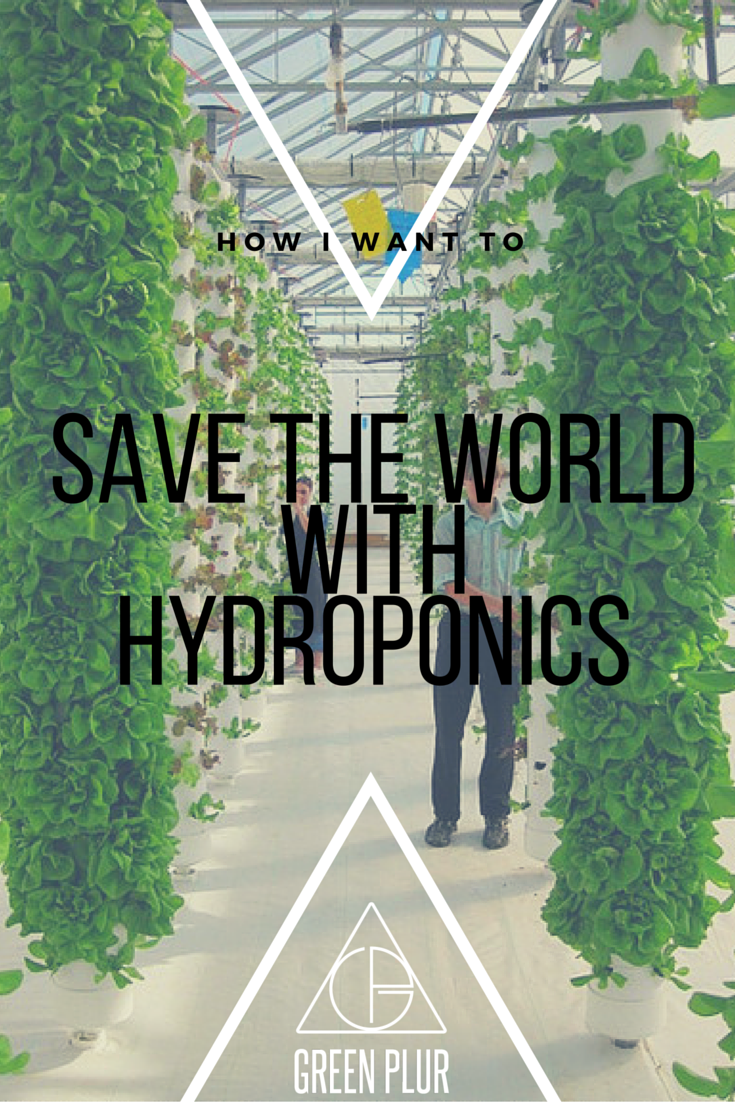 Save the World with Hydroponics
